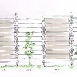 Sichtschutzsystem Handskizze